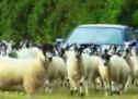 Jeremy Clarkson snimio sopstvenu Gymkhanu – zove se Farmkhana (VIDEO)
