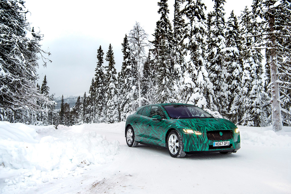 jaguar-snijeg (2)