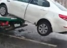 Evo kako reagira Rus kad mu pauk digne auto (VIDEO)